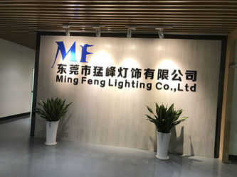 چین Ming Feng Lighting Co.,Ltd. نمایه شرکت